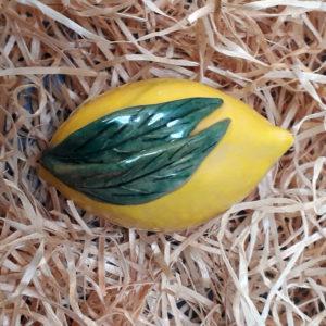 Citron grand modèle